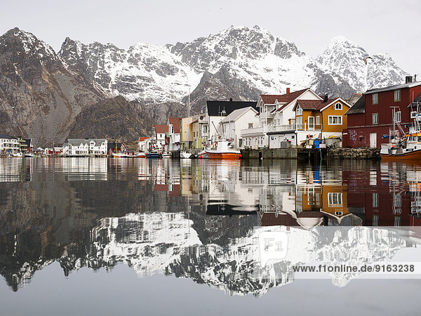 The Lofoten mountains being reflected in the water of the harbour of Henningsvaer  Lofoten  Norway