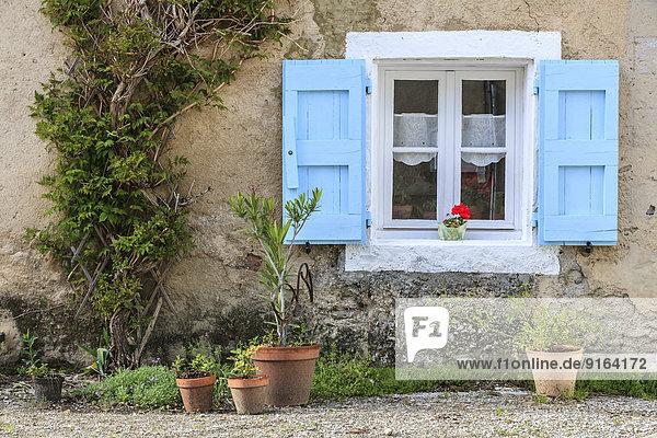 Helligkeit Frankreich Fenster Pflanze blau Topfpflanze Jalousie