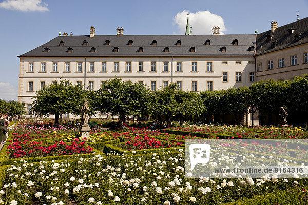 Garten Bamberg Bayern Deutschland Rose Oberfranken