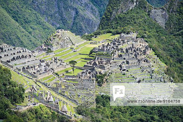 Ruinen  Inkastadt Machu Picchu mit dem Hauptplatz oder Plaza Principal und Terrassen  UNESCO-Weltkulturerbe  Urubambatal  bei Cusco  Anden  Peru
