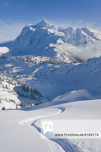 Snowy Mount Shuksan overlooking village  Washington  United States