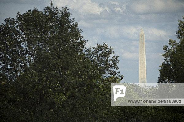 Monument overlooking treetops  Arlington  Virginia  United States