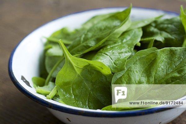 Schale mit Spinatblättern  Spinacia oleracea Schale mit Spinatblättern, Spinacia oleracea