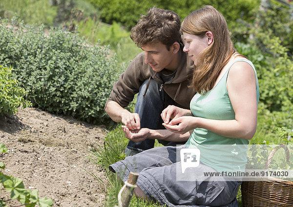 Junges Paar bei der Aussaat im Garten