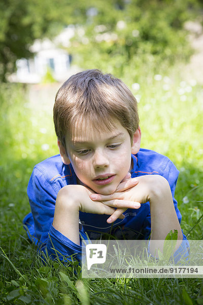 Portrait of daydreaming boy lying on meadow