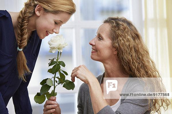Tochter präsentiert ihrer Mutter eine weiße Rosenblüte