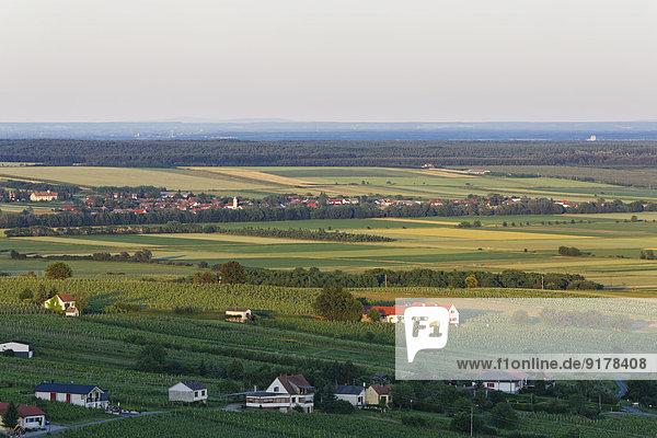 Österreich  Burgenland  Kreis Oberwart  Eisenberg an der Pinka  Weinberge  im Hintergrund Dorf Horvatloevoe in Ungarn