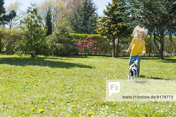 Junge spielt mit Jack Russel Terrier Welpe im Garten