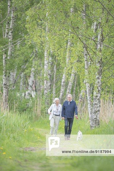 Senior Senioren gehen Wald