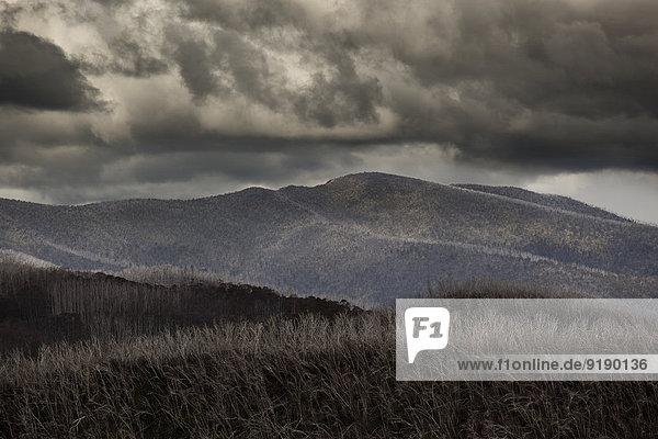 Sturmwolken über Bergen  Mt Hotham  Victoria  Australien