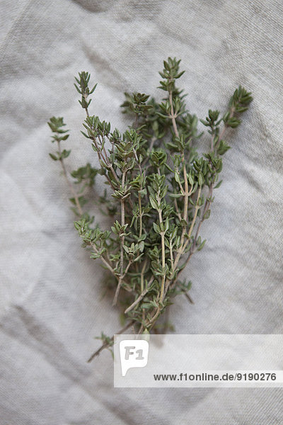 Bunch of thyme on paper