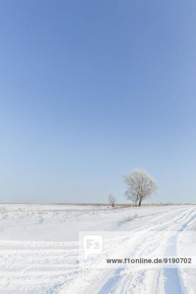 Ruhiger Blick auf die verschneite Landschaft bei klarem  blauem Himmel