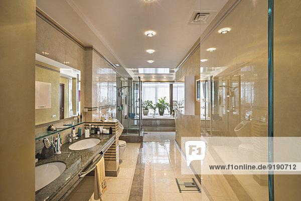 Interieur des häuslichen Badezimmers