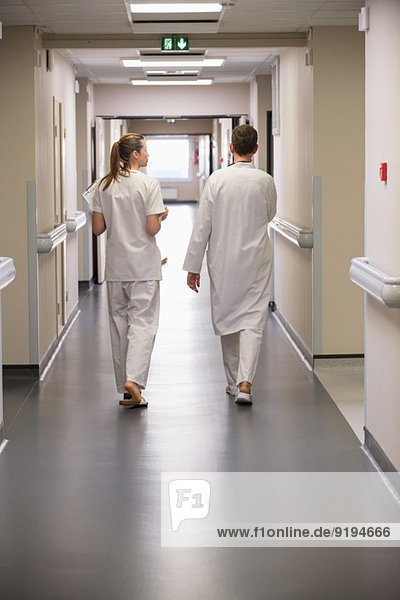 Rear view of doctors walking in the corridor of a hospital