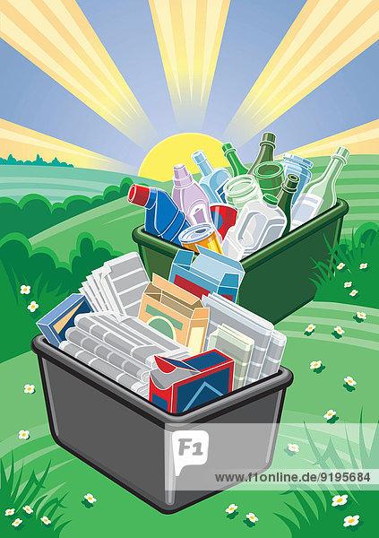 Plastik  Dosen  Glas  Papier und Karton in Recycling-Boxen in der Natur
