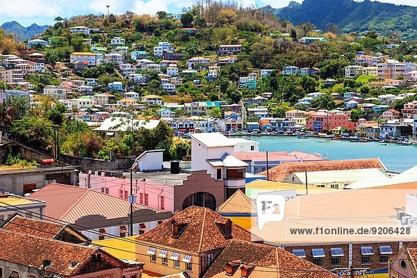 View of the Carenage natural harbour  St George  Grenada  West Indies with the traditional styled wooden houses of St George township.