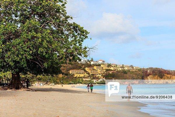 Strand Westindische Inseln Ansicht Quarantäne zeigen Grenada Hauptstadt