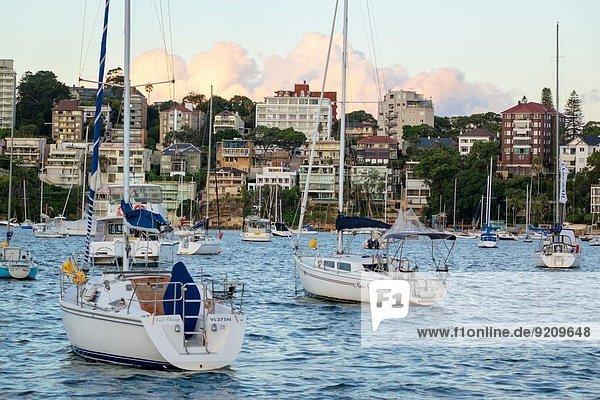 Fischereihafen Fischerhafen Motorjacht Gebäude Ufer Boot vertäut Eigentumswohnung Segelboot Australien New South Wales Sydney Sydney Harbour Wohnhochhäuser