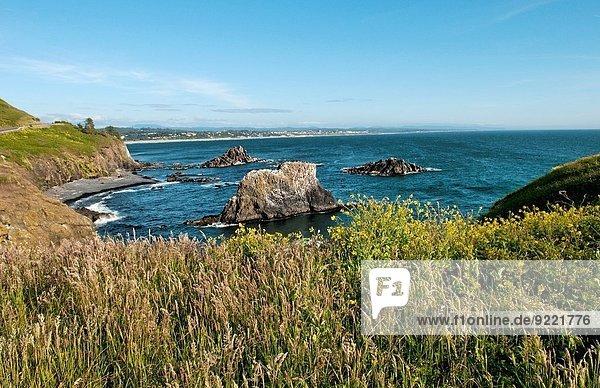Felsbrocken nehmen Ozean Leuchtturm Oregon