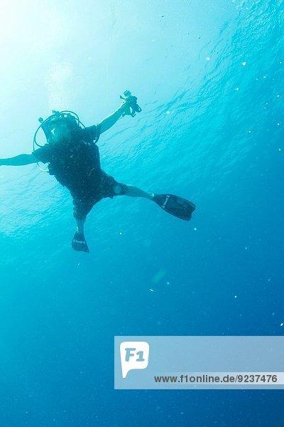 Vereinigte Staaten von Amerika USA Unterwasseraufnahme Taucher Festung Florida