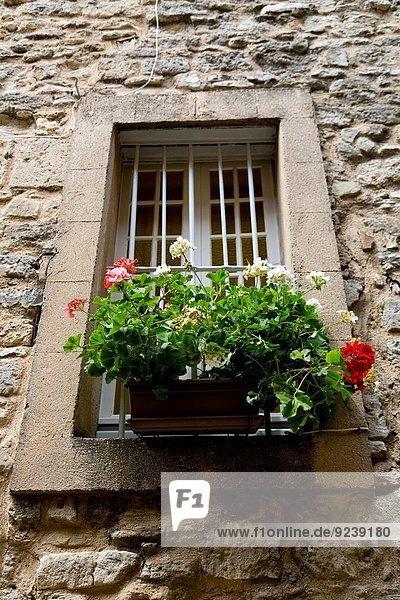 Mittelalter Frankreich Blume Dorf Provence - Alpes-Cote d Azur Bonnieux