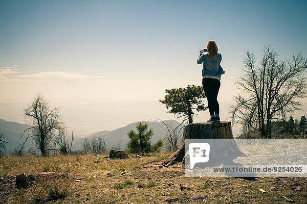 Rückansicht der mittleren erwachsenen Frau beim Fotografieren vom Baumstamm  Lake Arrowhead  Kalifornien  USA