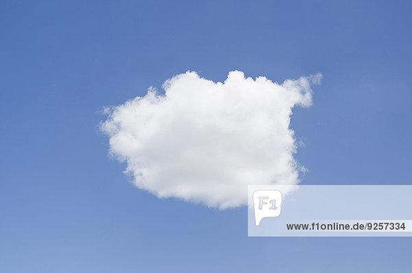 One cloud on blue sky