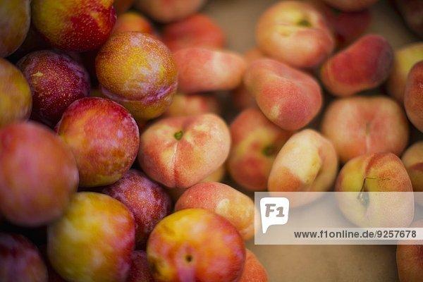Weinbergpfirsiche und rote Pflaumen