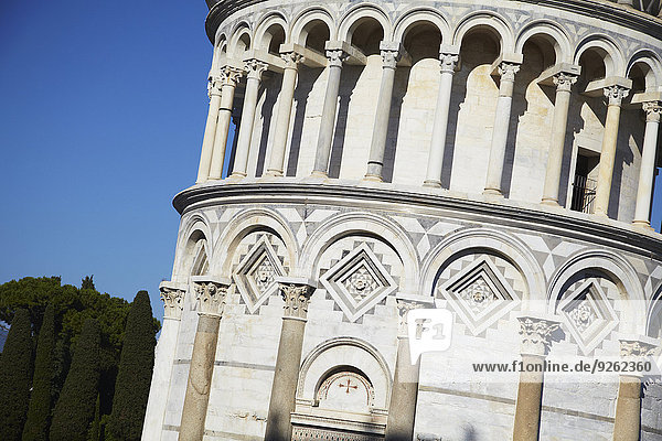 Leaning Tower of Pisa  Toscana  Italy