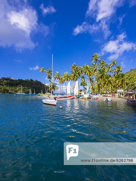 Karibik  St. Lucia  Marigot Bay  Segelyachten