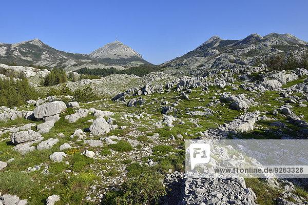 Montenegro  Crna Gora  Karstlandschaft im Nationalpark Lovcen