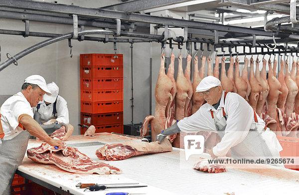 Verarbeitung von Schweineschlachtkörpern in einem Schlachthof