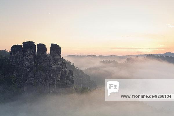 Deutschland  Sachsen  Blick auf Gansfels am Elbsandsteingebirge im Morgennebel