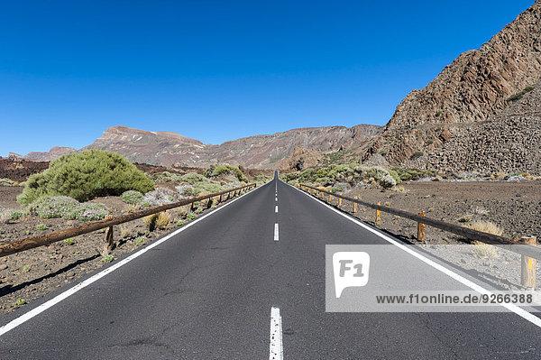 Spanien  Kanarische Inseln  Teneriffa  Teide Nationalpark  Leere Straße