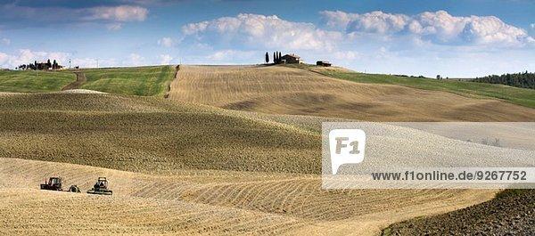Ernte in der Agrarlandschaft  Siena  Valle D'Orcia  Toskana  Italien