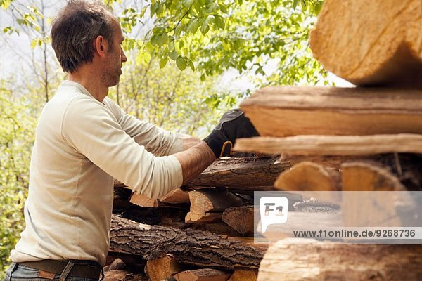 Man stacking cut wood