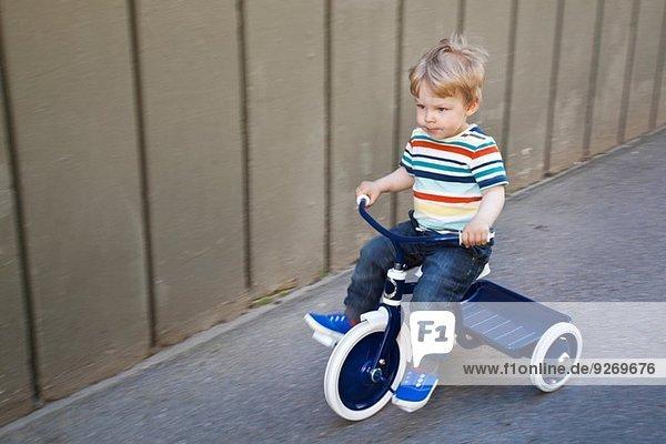 Männliches Kleinkind beim Dreiradfahren im Garten
