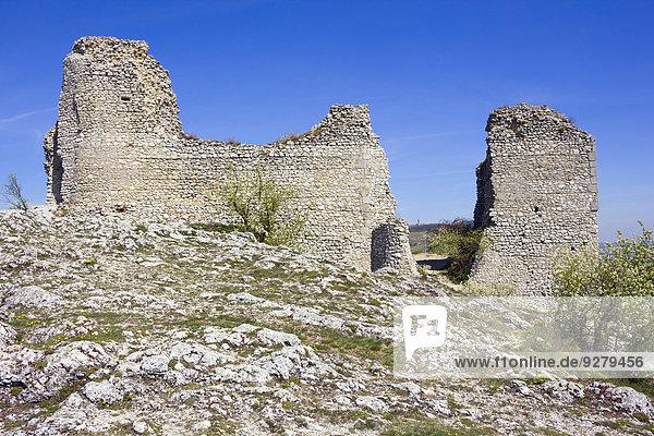 Die Ruinen der Burg Sirot?í Hrádek  Palava Landschaftsschutzgebiet  Bezirk Breclav  Jihomoravsky Region  Tschechien