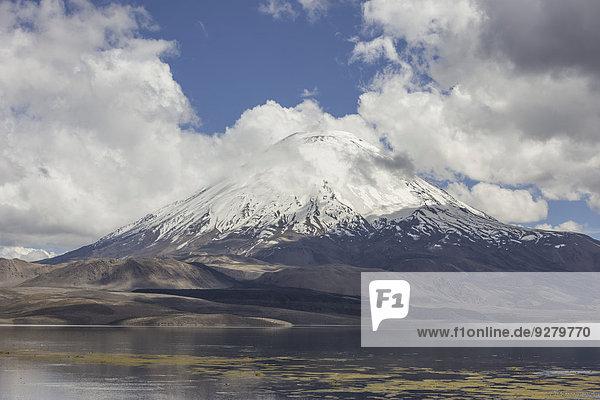 See Chungará und Vulkan Parinacota  Putre  Región de Arica y Parinacota  Chile