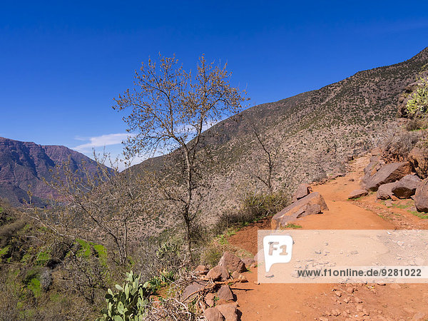 Lehmpfad im Ourika-Tal  Atlas-Gebirge  Marrakesch-Tensift-El Haouz  Marokko