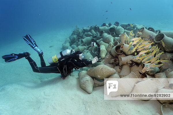 Fisch Pisces Unterwasseraufnahme fotografieren Fotograf Amphore Ägypten Hurghada Rotes Meer Fischschwarm