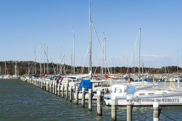 Motorjacht Jachthafen