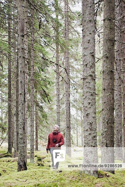 Mann gehen Wald
