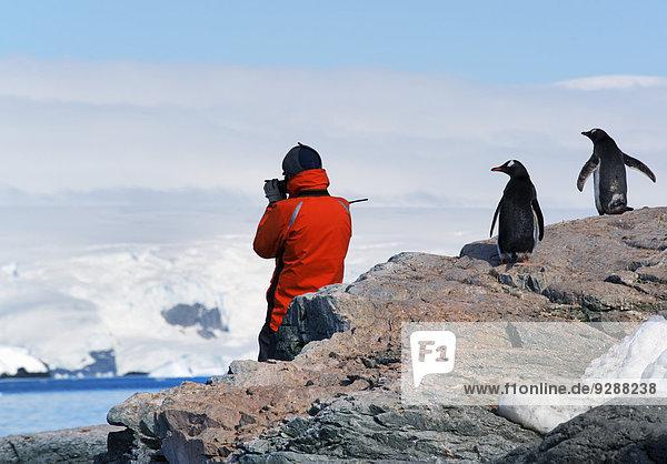 Landschaftlich schön landschaftlich reizvoll Mensch Jacke fotografieren Antarktis Halbinsel