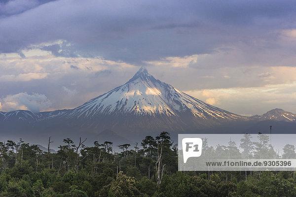 Vulkan Puyehue im Abendlicht  Puyehue  Región de los Lagos  Chile