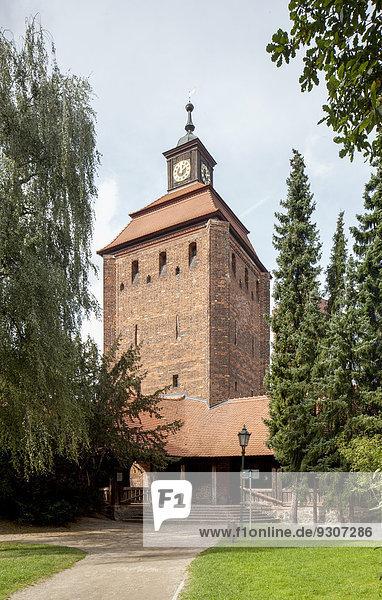 Steintor  Wehrturm der mittelalterlichen Stadtbefestigung  Heimatmuseum  Bernau  Brandenburg  Deutschland