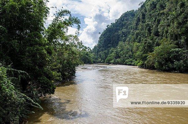 The Huallaga river in Tingo Maria. Huanuco department. Peru.