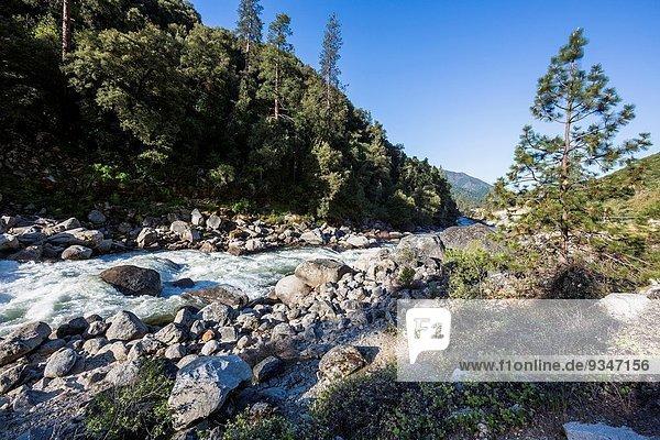 Vereinigte Staaten von Amerika USA nahe Nationalpark Felsen Landschaft Fluss Yosemite Nationalpark Kalifornien Merced