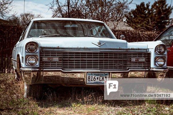 Vereinigte Staaten von Amerika USA Garten frontal Cadillac Rost links Minneapolis Minnesota alt