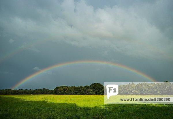 Sturmwolken und Regenbogen über Feldlandschaft  Breda  Noord-Brabant  Niederlande